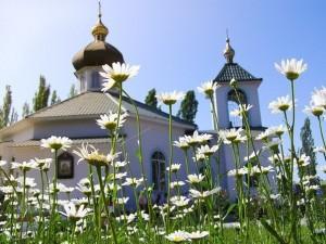 Церковь в ромашках
